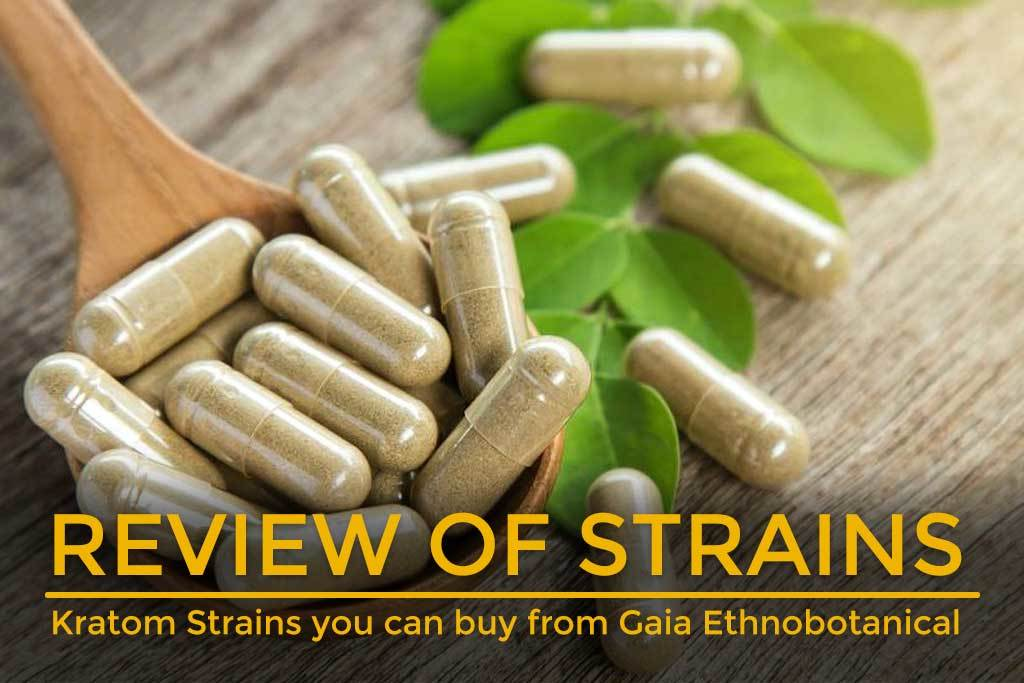 Kratom-Strains-you-can-buy-from-Gaia-Ethnobotanical