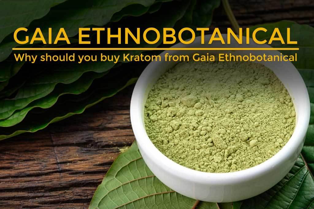 Why-should-you-buy-Kratom-from-Gaia-Ethnobotanical